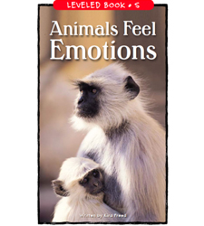 Animals Feel Emotions