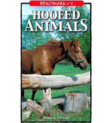 Hoofed Animals