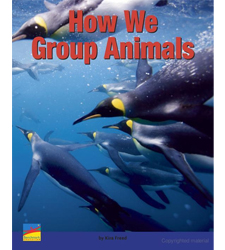 How We Group Animals
